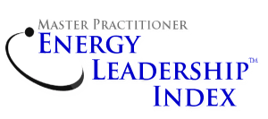 Master Practitioner Energy Leadership Index